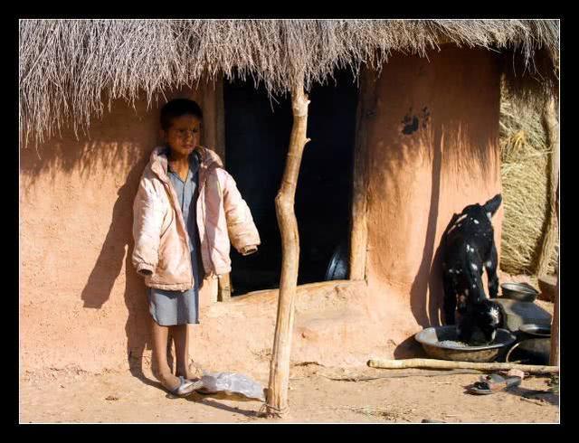 全世界将增加8600万贫困学生 全球贫困学生数量将做到6.72亿