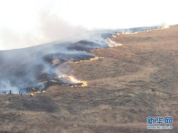 宁夏固原原州区荒山起火系群众上坟,9名涉事人员自首。